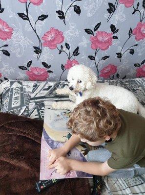 Klayton and Ollie (dog)